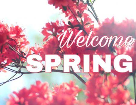 Pulizie di primavera in musica