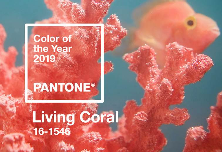 Living Coral arrendamento design